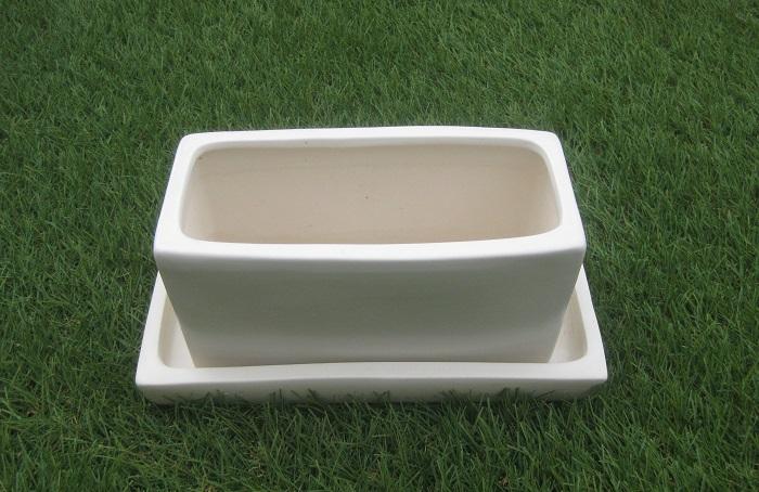 素焼きに比べて陶製は通気性や排水性がやや劣りますが、植物の生育には問題はありません。デメリットは、強くぶつけると割れること、重いことです。