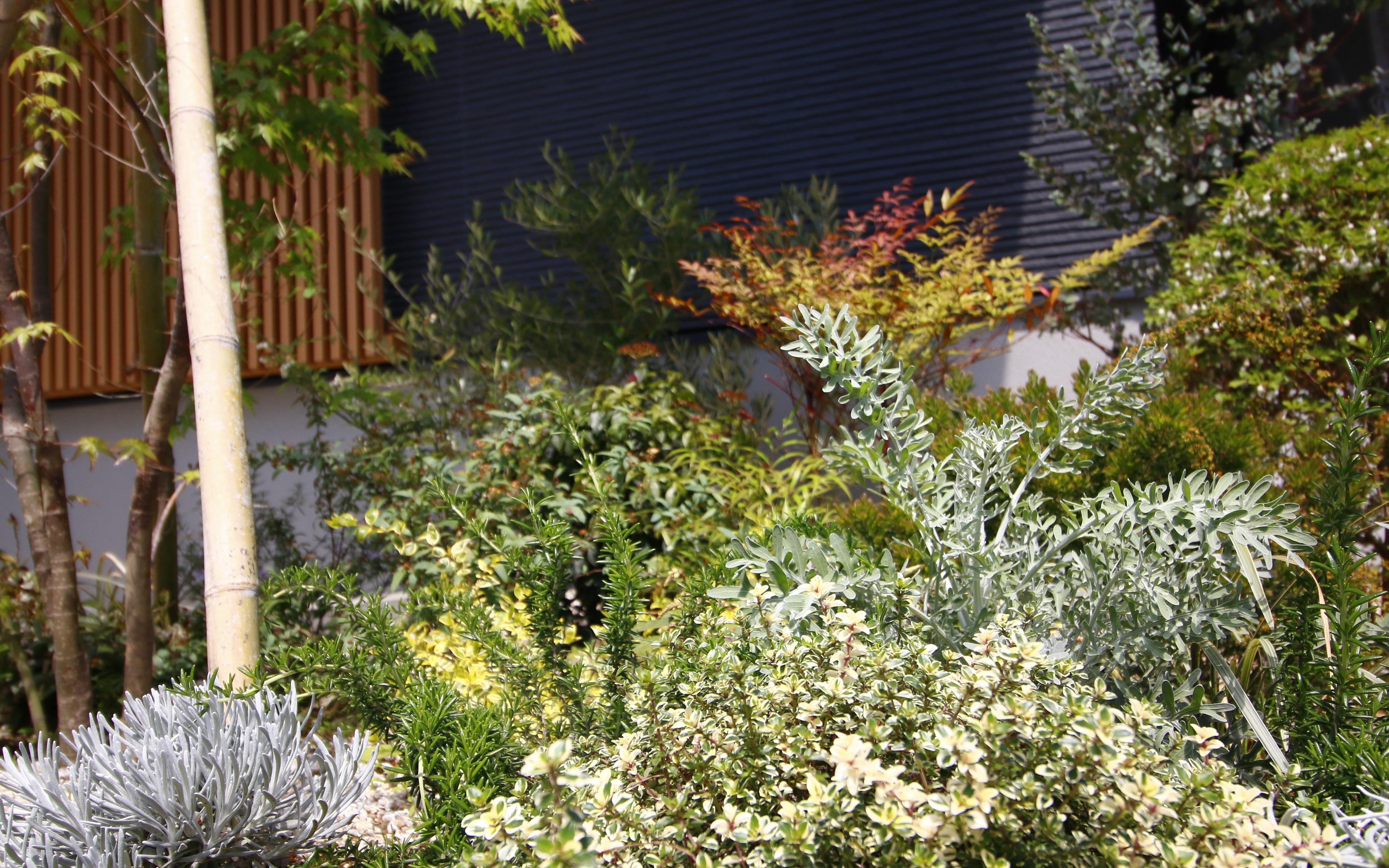水はけが悪く、植物が育たない・植えられないと諦めていたスペースも、花壇を作り、水はけを良く整備することで、植物にとって良い環境に変えてあげることができます。
