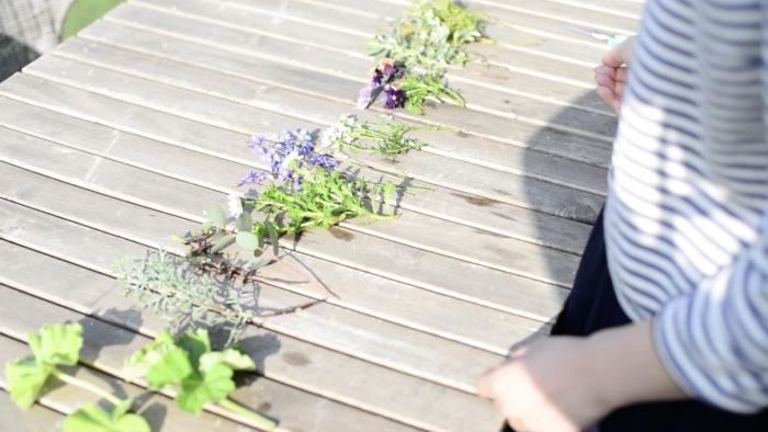 春になるとお庭やプランターに植えた植物達が芽を出して、かわいい花々を咲かせます。  新芽ならではの色合いや、蕾のかわいらしさは、お庭やプランターでしか見られない愛おしい姿です。  新緑も溢れる様に芽吹き、明るいグリーンと爽やかな風に急かされる様に心も弾みます。  気持ちの春の陽気に誘われるように、ガーデンパーティやご自宅に招かれてのティーパーティーも多くなってきませんか?  そんな時のお土産に、手作りのブーケはいかがでしょうか?ホッコリ優しい気持ちと一緒に、お庭に咲いた小さな花々をギュッとブーケにつめこんで季節のプレゼントにするのも素敵ですね。  春を楽しみながら、かわいいお花達にふれてみましょう。