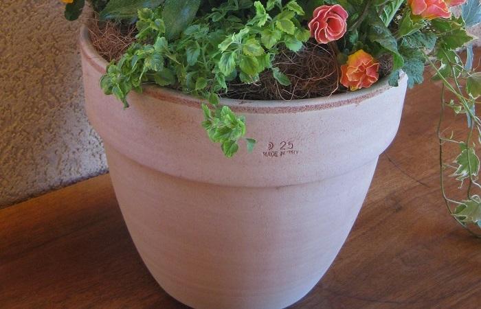 テラコッタなどの素焼きの鉢は、通気性や排水性が良く植物が育てやすいです。価格も安いものからあるので初心者におすすめです。