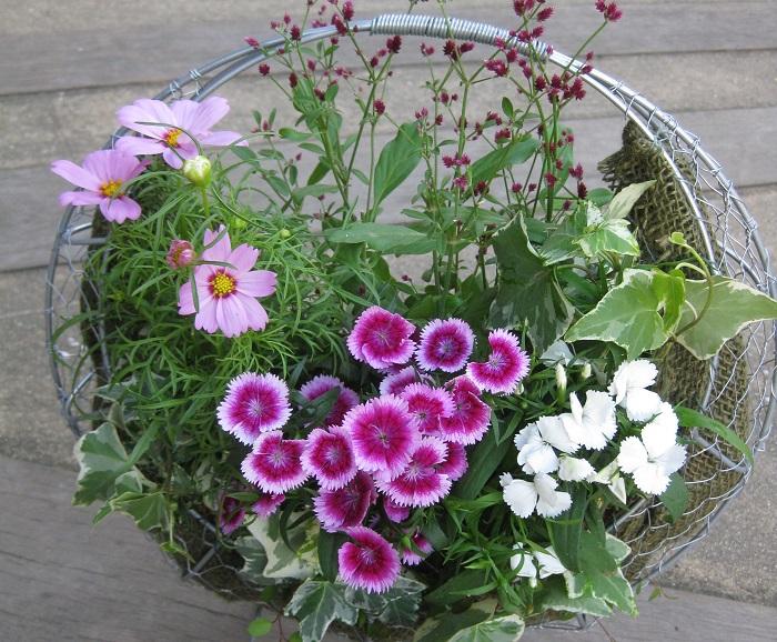 軽く、通気性、排水性が良くデザイン性もあります。麻布やココヤシファイバー、不織布などを敷いて土を入れ、植物を植え付けます。