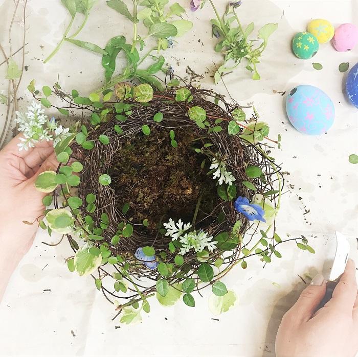 ドライのツルをまあるく組んで鳥の巣を作ります。器より一回り大きいくらいのサイズでいいです。少し厚みを持たせるようにまあるく組みます。  器にはあらかじめ水を吸わせたフローラルフォームとその上に苔をセットしておきます。  器に鳥の巣を取り付け、竹串などで固定します。  あとは鳥の巣に合わせて、まあるく弧を描くようなイメージでツル植物を這わせていきます。切り口はしっかりフローラルフォームに挿してお水を吸わせるようにしましょう。  ツル植物を入れ終わったら、お花を挿していきます。鳥の巣の中にはイースターエッグが入りますので、鳥の巣の外側に自然な感じで入れていきます。