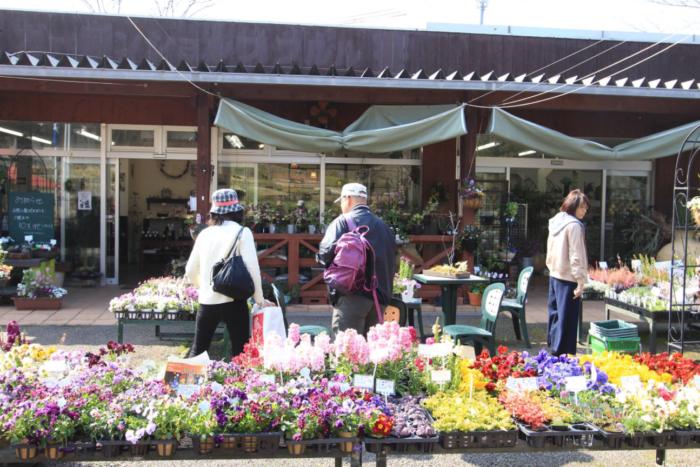 入園ゲート横のガーデンショップです。「GARDEN SHOP」ではお花の苗をはじめ、ガーデニンググッズの販売をしています。