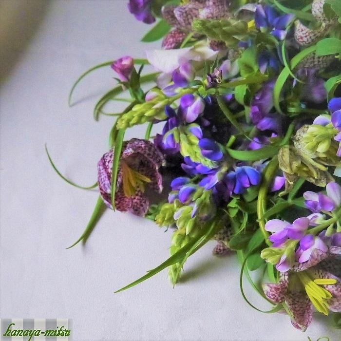 切り花での出回り時期は2~3月です。草花はすぐに萎れてしまいそうな印象がありますが、最初にしっかりと水上げを行えば長く楽しめます。淡い色が印象的な草花ですので、春の野花との相性は最高です。ラナンキュラスのような安定感のあるお花も、シラーやワスレナグサ、ムスカリのような小花の集合体も、バイモユリやケマンソウのような個性的なお花とも合わせやすく、森で摘んできたような花束が出来上がります。