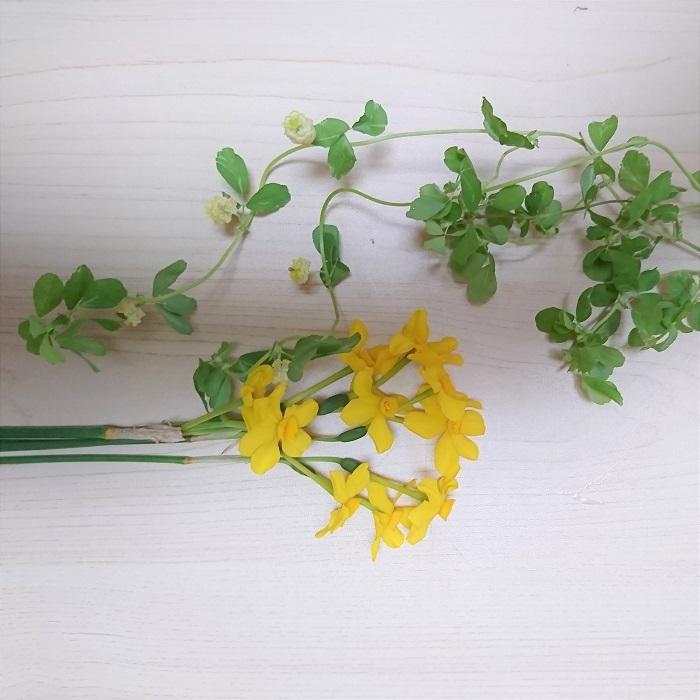 ・クスダマツメクサ  ・スイセン  ・チランジア  明るい黄色のお花を用意しました。黄色のお花は見る人の気持ちを明るくしてくれます。人が集まるリビングなどに飾りたいですね。