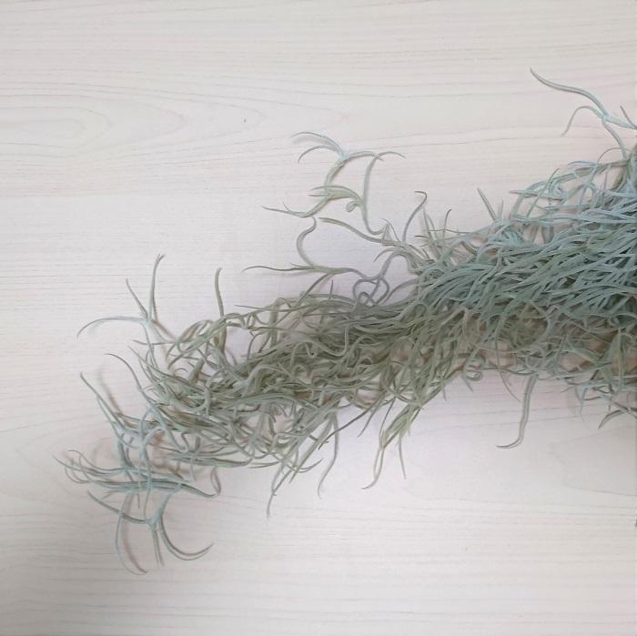 ベースが出来たら、お花を入れていきます。ここからは吊るして行いましょう。  枝を足し終わったリースにリボンや麻ひも、ワイヤーなどを結びつけて上から吊るします。吊るした状態で、フローラルテープを巻きつけたピックやテストチューブにお水を入れて、お花を飾る準備をします。ピックをリースに差し込んでセットしていきます。 枝の隙間に上手に差し込んでいきましょう。安定が悪いようであれば、ワイヤーなどで固定させてください。リースに入れる植物は一定方向に弧を描いている方が納まり良くなります。ピックをセットする際には、傾ける方向に一定性を持たせましょう。 すべて同じ長さで同じ方向をを向いていても安定感のあるリースになり可愛いのですが、せっかく動きのある花材で作っていますから、今日は自然な動きをたのしみましょう。