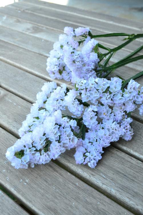 スターチスは、生花の時点からカサカサした触感で、ドライフラワーになりやすい花です。