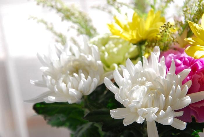 お彼岸にお花を贈る場合 お花のお届け日は、お彼岸の入りの午前中くらいまで、もしくはお彼岸の入りの前日にお届けします。遅くても中日くらいまでにお届けするようにするのが一般的です。  お届けする方法は、アレンジメントか花束でお届けします。花屋さんに「お彼岸用」と用途を伝えて花材やデザイン(アレンジか花束か)などを相談してみましょう。  花のお届けもので大切なことは、留守中にお花が届いてしまうことのないようにご在宅日を確認してから手配することが大切です。    お墓参りのお供えの花によく使われる花 お供え用の花束は対(2束)で用意します。  「とげのある花」「匂いの強い花」「毒のある花」を使わないのが一般的です。また、お墓にお供えする花は外に飾ることになるので、日持ちする花を選ぶのが大切です。このことから日持ち抜群の菊がよくつかわれています。  その他、花屋さんの店先でお彼岸用の花束によく使われている花をご紹介します。  春 菊、小菊、カーネーション、スターチス、フリージア、スイートピー、ユリ、トルコキキョウ、ラン・・・    秋 菊、小菊、りんどう、キキョウ、ソリダコ、カーネーション、ラン、ユリ、トルコキキョウ・・・