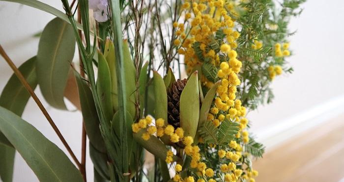 今回使用したリューカデンドロンは、花が咲き始めてきて色だけではなく変化も楽しめるスワッグに仕上がっています!  春はお花がより多く出回り始める季節。好きな種類の花を組み合わせて、好きがたくさんつまったflower lifeをお過ごしください。
