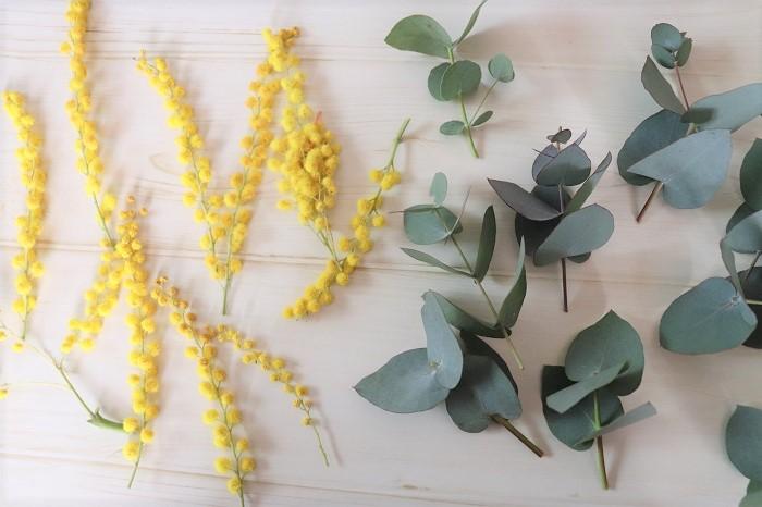 残ったミモザの花、ユーカリの葉(お庭にある常緑樹の葉など何でも)、リース台、はさみなど