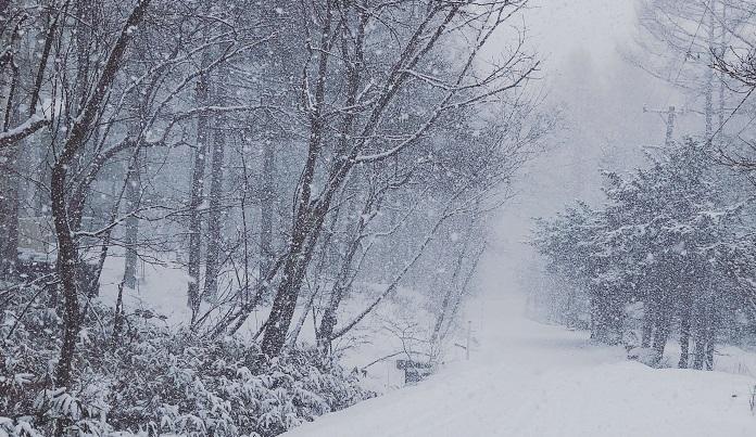 2020年の大雪(二十四節気)はいつ?暦のある生活 | LOVEGREEN(ラブ ...