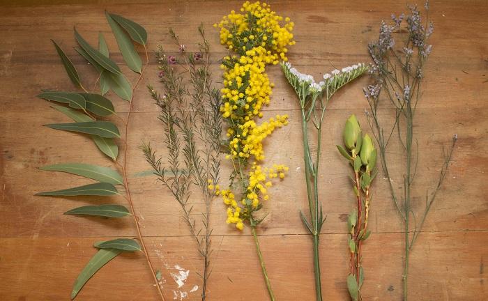 左から、ユーカリ・ワックスフラワー・ミモザ・スターチス・リューカデンドロン  スターチスやワックスフラワーなどをミックスして色を楽しめるスワッグ作り。  ドライになっても綺麗な黄色のミモザと同じように、ドライになっても色が変わりにくいお花と合わせるのがポイントです!  ミモザの色と反対色でもあるブルー系のお花と合わせることで主役のミモザの色がより際立ちます。