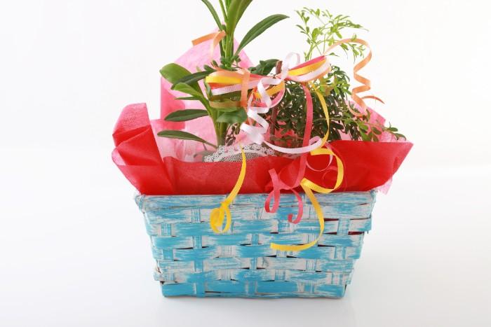 友人、家族、知人が転居し、相手に現金や品物を贈る時、「引っ越し祝い」という言葉がよく使われますが、転居の理由によって「引っ越し祝い」「新居祝い」など、呼び名も変わり、相手がどのような理由で、どのような家に引っ越すのかによって、のしの表書きも変わります。