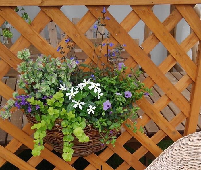 通路の隙間にあるちょっとしたスペース。地植えは十分な土の量が確保できず、植物が育ちにくいので、プランターを利用しましょう。寄せ植えにすると一層華やかな雰囲気を演出できます。色々植えたけど花壇がもういっぱい、という方にもおすすめです。