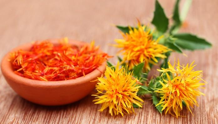 植物名ベニバナ(紅花) 学名Carthamus tinctorius 英名Safflower 科名キク科 属名 ベニバナ属  原産地  エジプト 染料や食用油に使用されるベニバナ。山形の県花でもあります。別名は「末摘花(すえつむはな)」といいます。