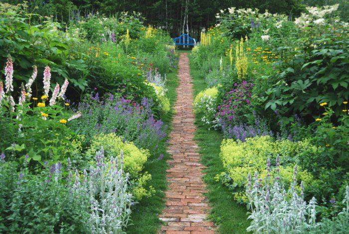 名前の通り鏡合わせのように左右対称に宿根草を植えこんだ帯状の花壇で、イギリス式の庭園でよく見られます。そよ風と共に花の間を通り抜ける気分はとっても爽快です!