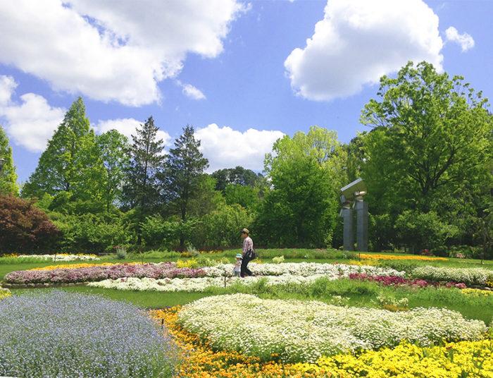 入園ゲートを入って正面にある装飾花壇です。季節ごとのお花を植えているので、一年中彩り豊かなお花を楽しむことができます。