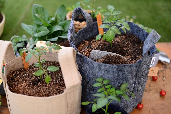 不織布プランター  布製のため持ち運びにも便利な不織布プランターは、最近人気のプランターです。  この不織布のプランターは、通気性・透水性・排水性も優れ、植物の根の生長が良くなるともいわれています。  土も底から流れず、虫も鉢底から入ることができないので害虫予防にもなる優れものです♪