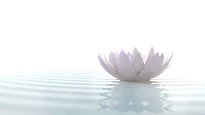 百寿のテーマカラーは「白色」です。百寿は「ももじゅ」と呼ばれることから、「桃色」のものを贈るのも良いとされています。