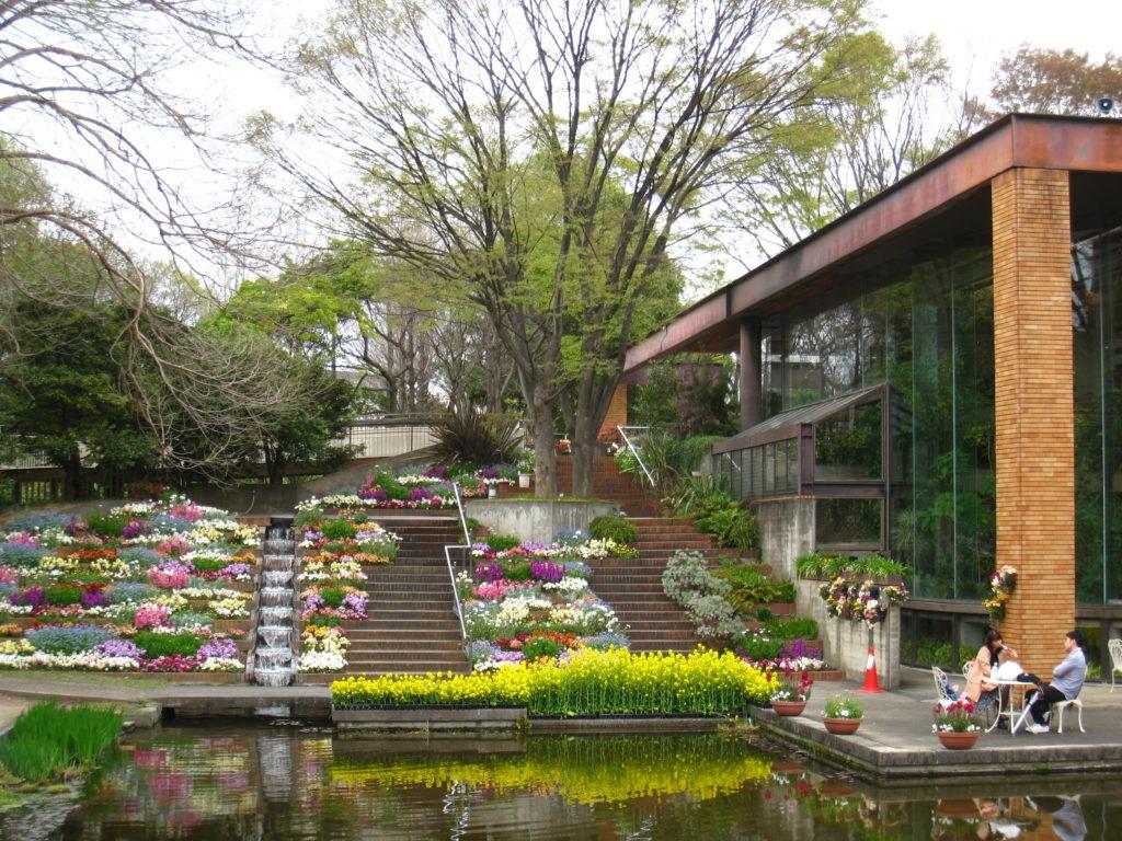 服部緑地 植物園春