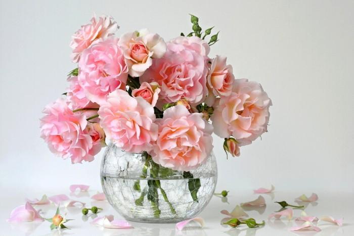 ピンク色のバラの花言葉は、「上品」「温かい心」。白い色は「尊敬」「清純」、黄色は「献身」「美」というように色別に花言葉があります。