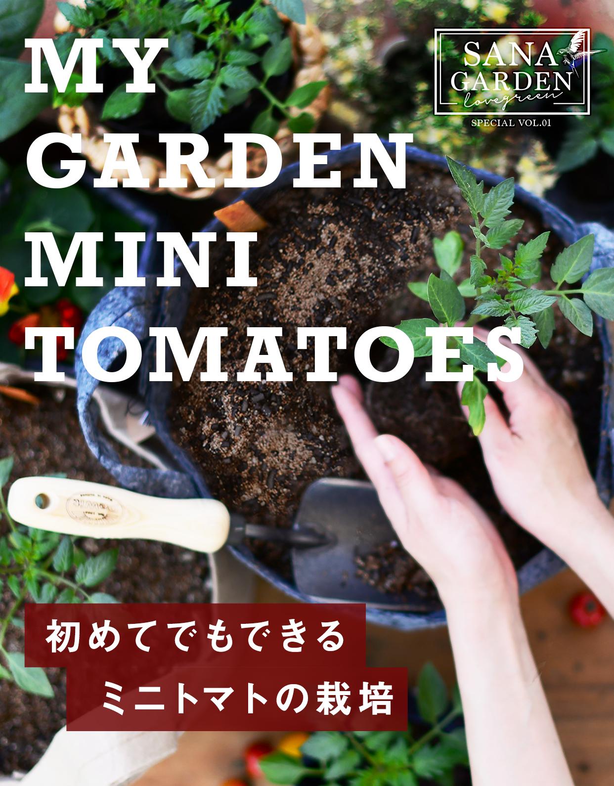 MY GARDEN MINI TOMATO 初めてでもできるミニトマトの栽培