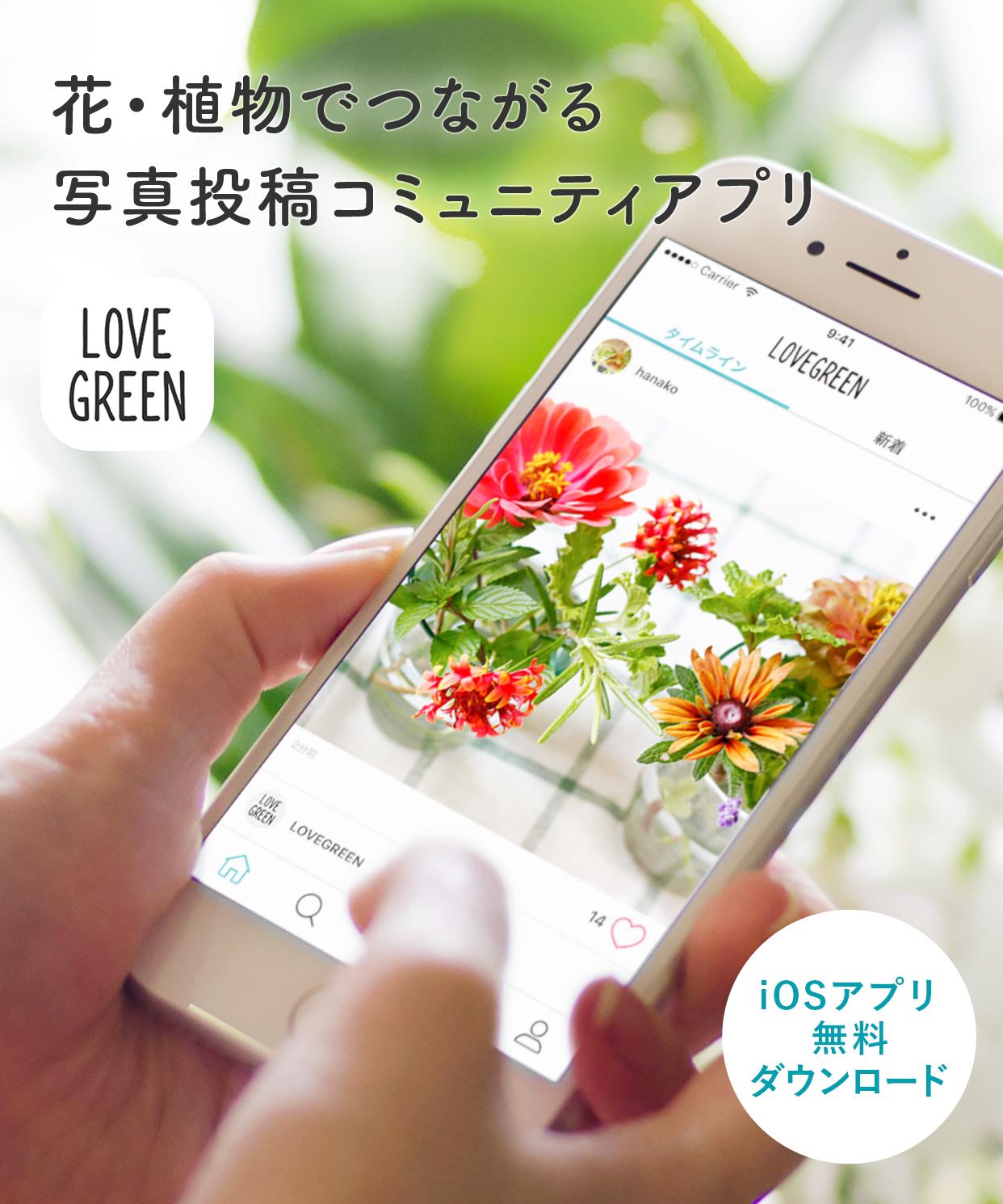 花・植物でつながる 写真投稿コミュニティアプリ