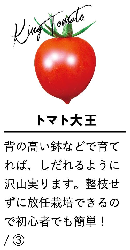 トマト大王
