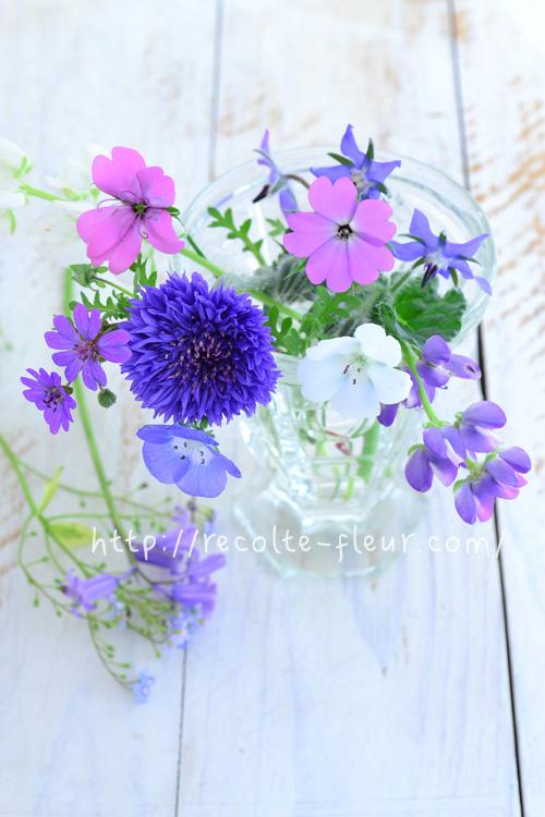 ルピナス、ヤグルマギク、ネモフィラ、ビスカリア、ゲラニウム・・・春から初夏のブルー~ピンク系の花あしらい