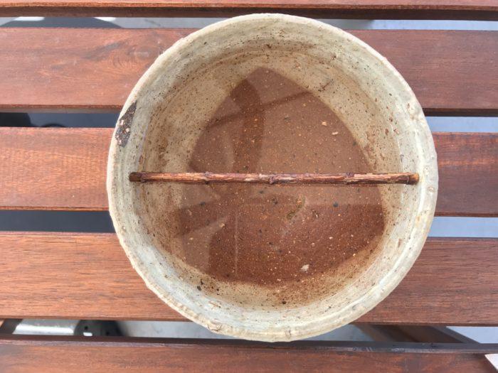 1.口が広い器なので、器の中に直径と同じ長さで枝を切り、花止め(ハナドメ)として十字にセットします。  写真は1本目