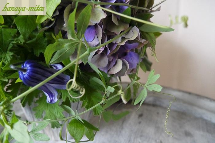 学名:Passiflora 科名: トケイソウ科 分類:ツル性多年草  手のひらのような形の特徴的な葉と、バネのようにくるくるとした巻きひげが特徴的です。亜熱帯原産の植物ですので、ちょっと南国のような雰囲気を出したいときに活躍してくれます。品種が豊富なので、葉の小さなものは野花のような雰囲気のなかでも上手に馴染んでくれます。 花や蕾がついていることもあります。花期が短く、すぐにぽろっと落ちてしまいますが、とても可愛らしい花が咲くので、咲いているのを見ると得したような幸せな気持ちになれます。 小花のなかに馴染ませても、大きなお花に絡ませるようにしても表情に複雑さを出してくれます。