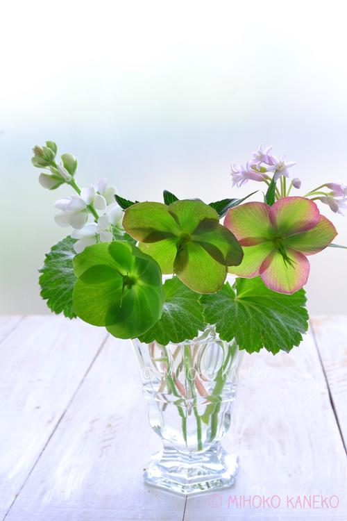 クリスマスローズ、ルピナス、シラー、ユキノシタの花あしらい