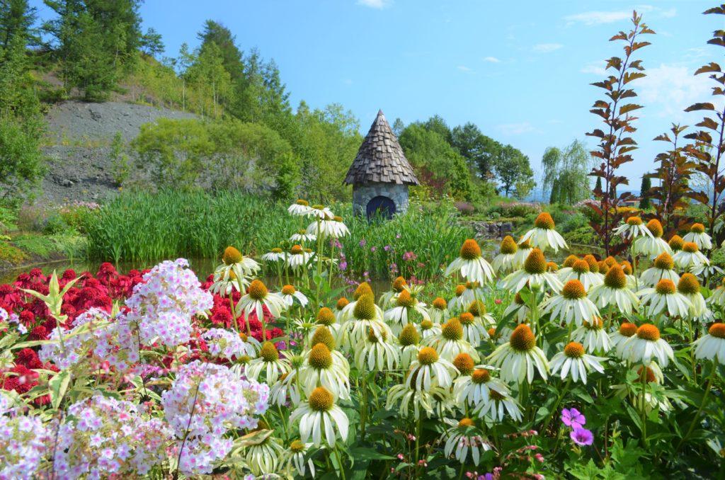 上野ファームノームの庭8月