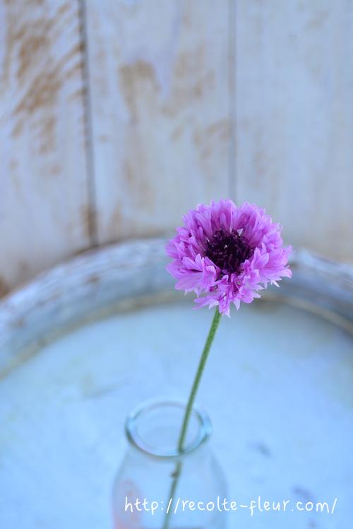 ボトルに一輪の花あしらい