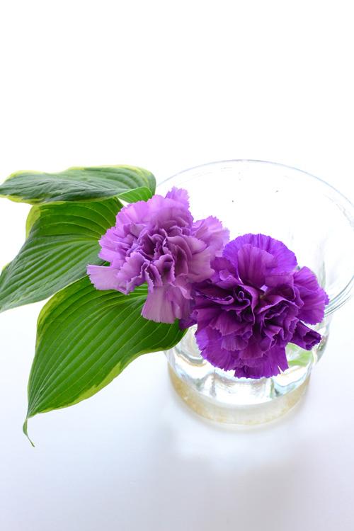 少ない本数の花材を大きめの花瓶に生けてみたい時は、あえて花瓶の片側だけを使ってアレンジしてみるのもおすすめ。