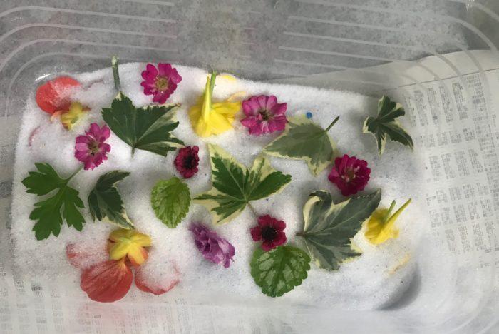 水分が多い場合は予めキッチンペーパーなどで拭き取り、できるだけ重ならないように花を並べます。