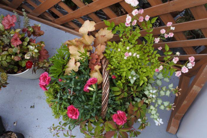 左下、ミニカーネーション  カーネーションは花弁をばらして使用しました。