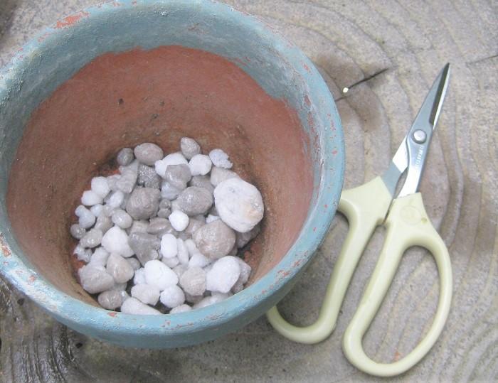 ・植え替える器 ・鉢底ネット ・鉢底石 ・土(市販のサボテン用の配合土など) ・消毒済みのハサミ ・手袋
