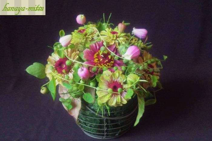 学名:Senecio rowleyanus 科名:キク科 分類:多肉植物  ころころんとしたグリーンのボールが連なるキク科の多肉植物です。名前の通りボールチェーンのネックレスの様な形状です。誰からでも好かれるような明るいグリーンで、遊び心を刺激します。 ビビットカラーのお花に合わせて、ポップで可愛い雰囲気を強調するのも素敵です。ホワイトグリーンのお花と合わせてすっきりシックな雰囲気にもよく合います。 束でまとめて使い過ぎると、重さが出てしまうので気をつけましょう。