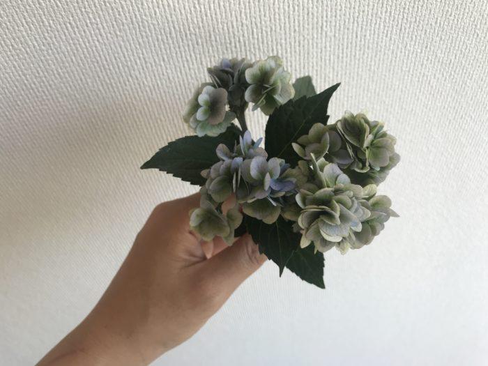 2.山紫陽花