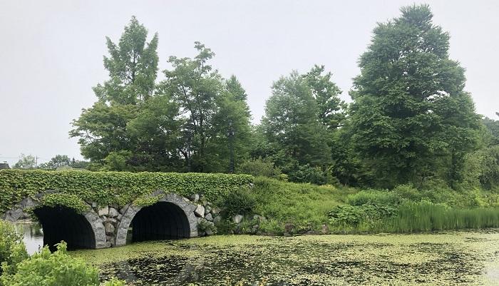 キヅタに覆われた眼鏡橋  軽井沢に植えられている樹木はその時に植栽されたもので、樹種も豊富です。今では樹高ものび、まるでずっとこの場所にあったような雰囲気です。中心にあるレイクガーデンの「レイク」という名の通り、湖を中心に、イングリッシュローズガーデン、ウッドランド、ラビリンスローズガーデン、フレグランスローズパス、フレンチローズガーデンなど8つのエリアに渡る多様なガーデン構成となっています。