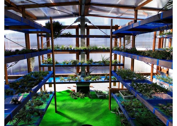常葉植物園