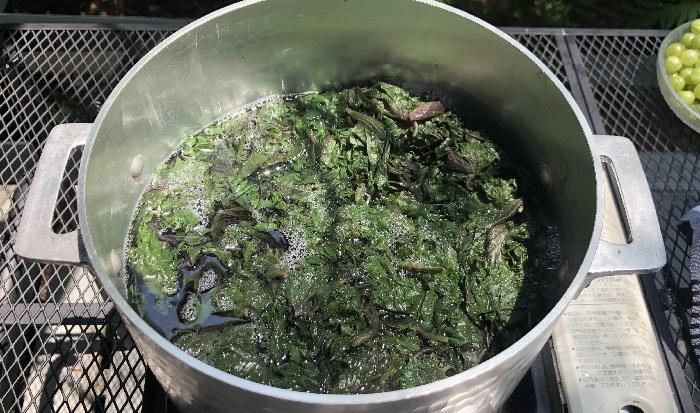 加熱していくと、赤しそが緑色に変化していきます。中火で15分程度煮出します。そのあと、ザルで葉を漉し、煮出した液を再び鍋に入れます。