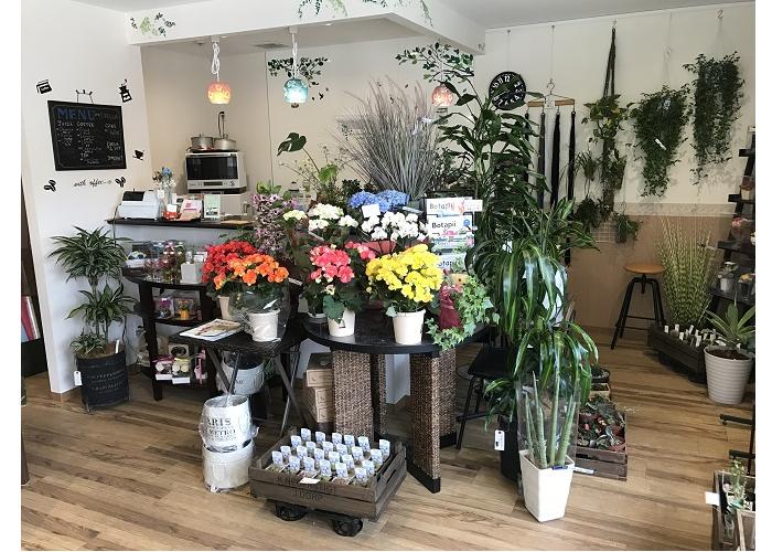 Flower&cafe STELLA