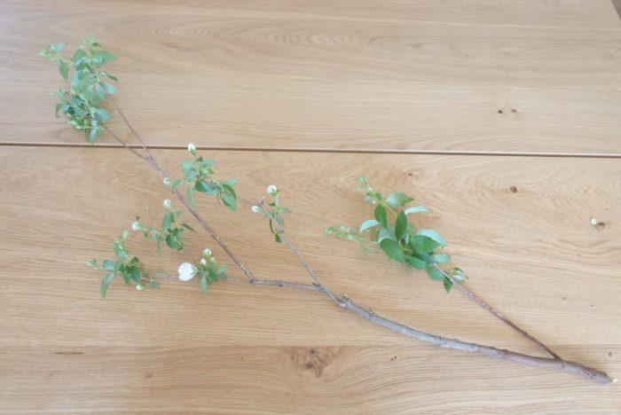 枝もの  花ではなかなかユリより大きいものを探すのが難しいので、高さを出したい場合は枝ものがおすすめです。こちらはバイカウツギという枝ものですが、ドウダンツツジなど枝と葉だけのものでシンプルに生けてもオシャレですね。