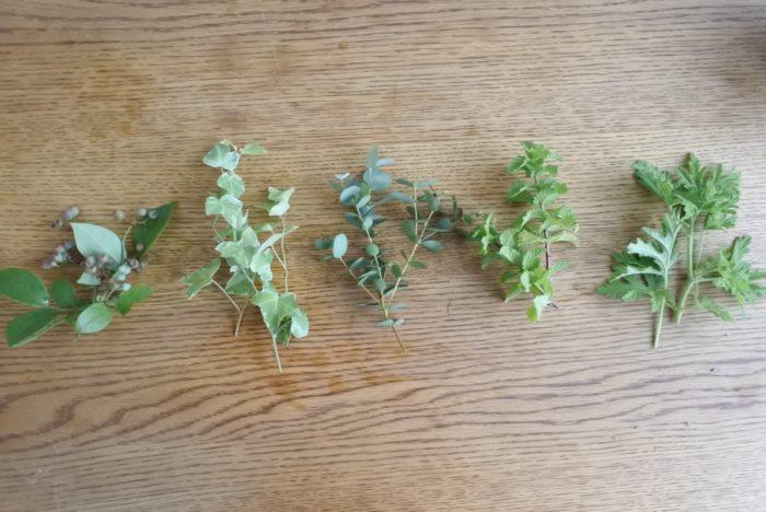 屋上ガーデンのグリーンを使用しました。左からブルーベリー、斑入りのアイビー、ユーカリ(グニー)、ミント、ローズゼラニウム。ブルーベリーはブラックベリーやスグリなど他の実ものでもOK!葉ものは2~3種類形の違うものがあると作りやすいです。
