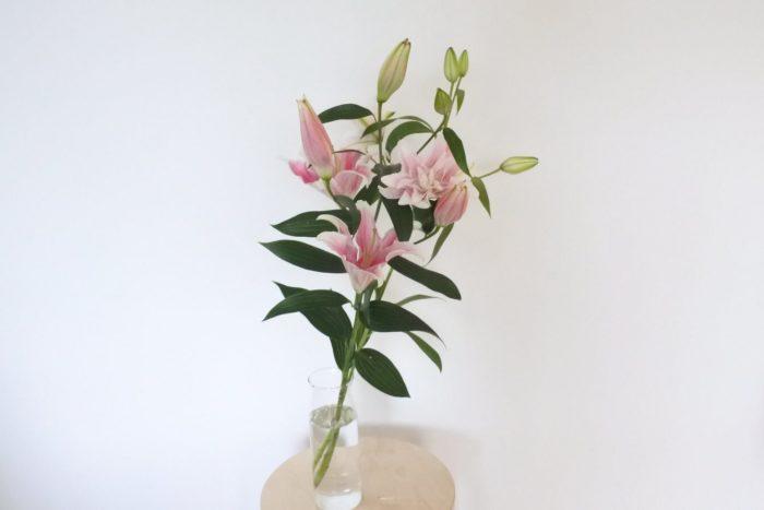 ユリ  ユリ同士で合わせるのもとても華やかです。写真はソルボンヌとイザベラの2種類のピンクのユリを生けました。白いユリを足すと色に変化が出てさらに華やかになります。