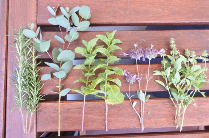 左からローズマリー、ユーカリ、ミント、セージ、バジル。  ハーブと一緒にドライになる他の花や葉と組み合わせてもかわいくできますね。葉だけで作る場合でも形が違うものを選ぶと、いろいろな種類を集めたブーケらしく仕上がりますよ。予め束ねる部分の葉を取り除いておくとまとめやすく、出来上がりの見た目もスッキリします。