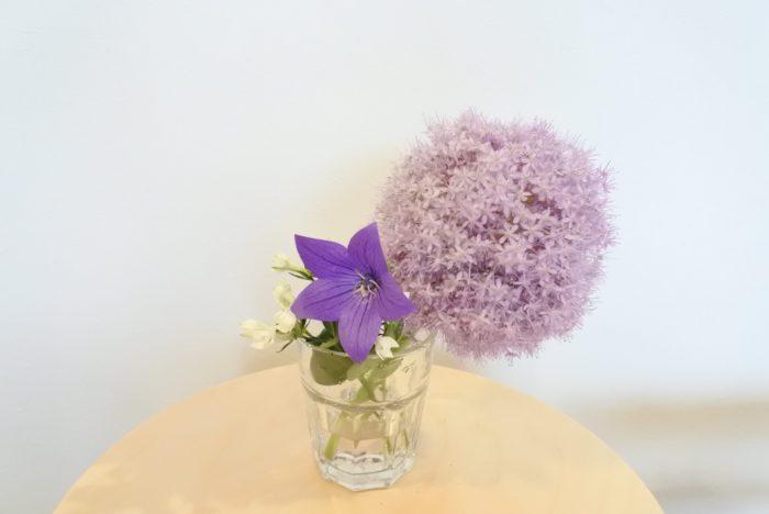ギガンジウム、キキョウ、ブバルディアを合わせて生けました。短くすれば、グラスにも生けられますね。頭が重いので、重さ、安定感のあるコップに生けましょう。グラスの淵に頭を引っ掛けるように生けると安定します。  夏場は水が汚れやすいため、どのアレンジも花瓶の水は毎日換えましょう。その時に、茎を1センチ程カットすると切り口が新しくなり水の吸い上げが良くなりますよ。直射日光やエアコンの風が当たらない、涼しい場所に置くと長持ちします。