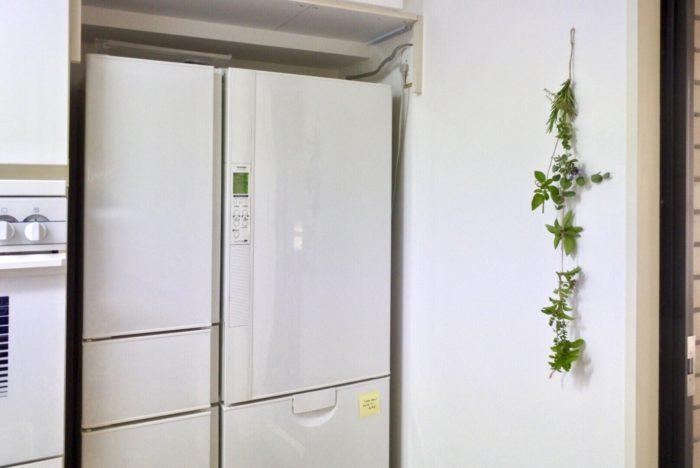 窓辺や、シンク下、ゴミ箱の周り、冷蔵庫と壁の隙間など、虫が通りそうな所に置いてみましょう。